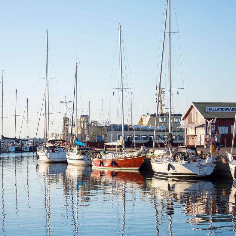Båstar i Torekovs hamn. Foto: Louise Nordström Pettersson