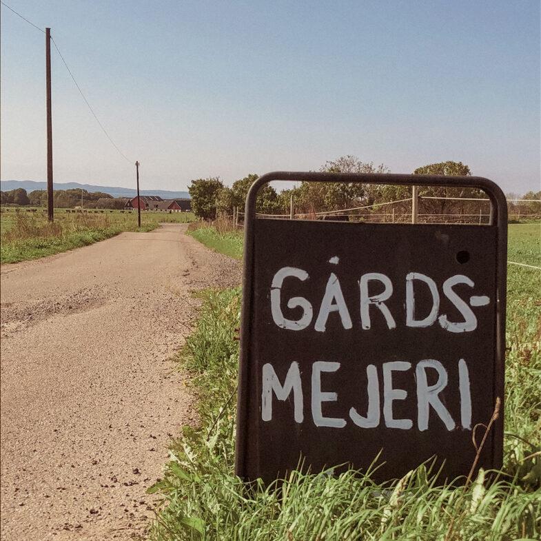 skylt om Gårdsmejeri vid vägkant i lantmiljö